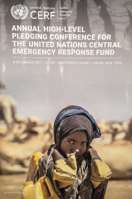 CERF pledging conference 600.000 euro